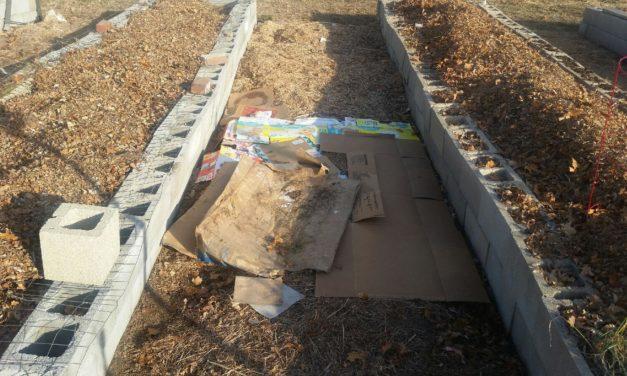 Christmas cardboard compost