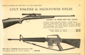 A 60-year-old sporting rifle is not the problem.