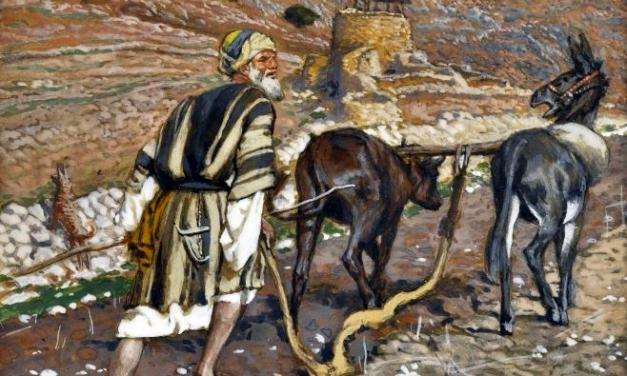 The Gospel of Luke: An Exposition (Luke 9:57-62)