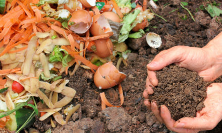 Super Easy Compost