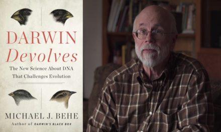 Video: Darwin Devolves