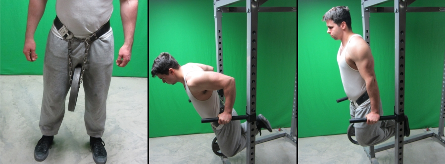 Image result for weighted dips