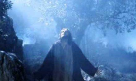 Hymn: Night With Ebon Pinion
