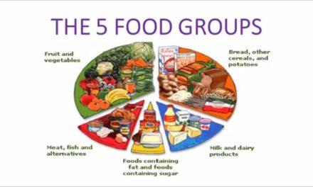Video: Do Food Groups Matter?