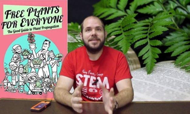 Video: Free Plants For Everyone