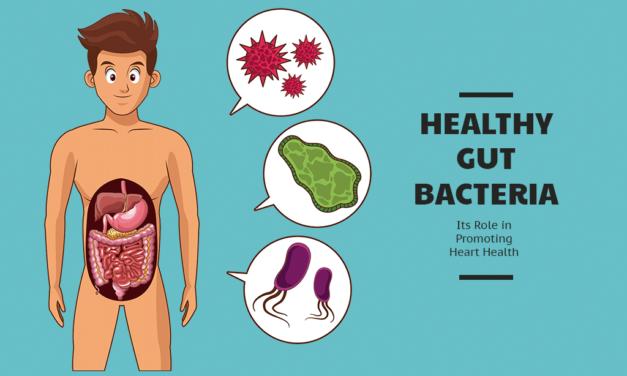 Video: Healthy Gut Protocol