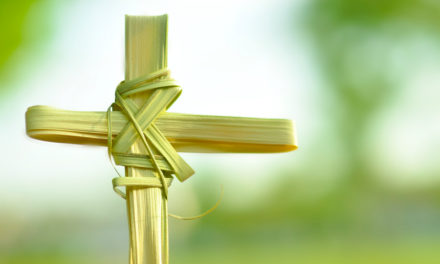 Some Thoughts On Palm Sunday