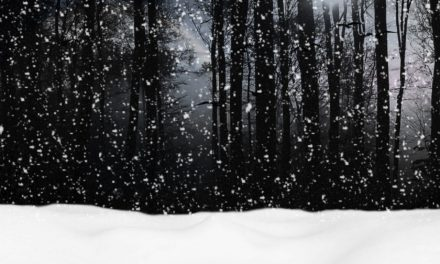"""""""Stopping by Woods on a Snowy Evening""""by Robert Frost"""