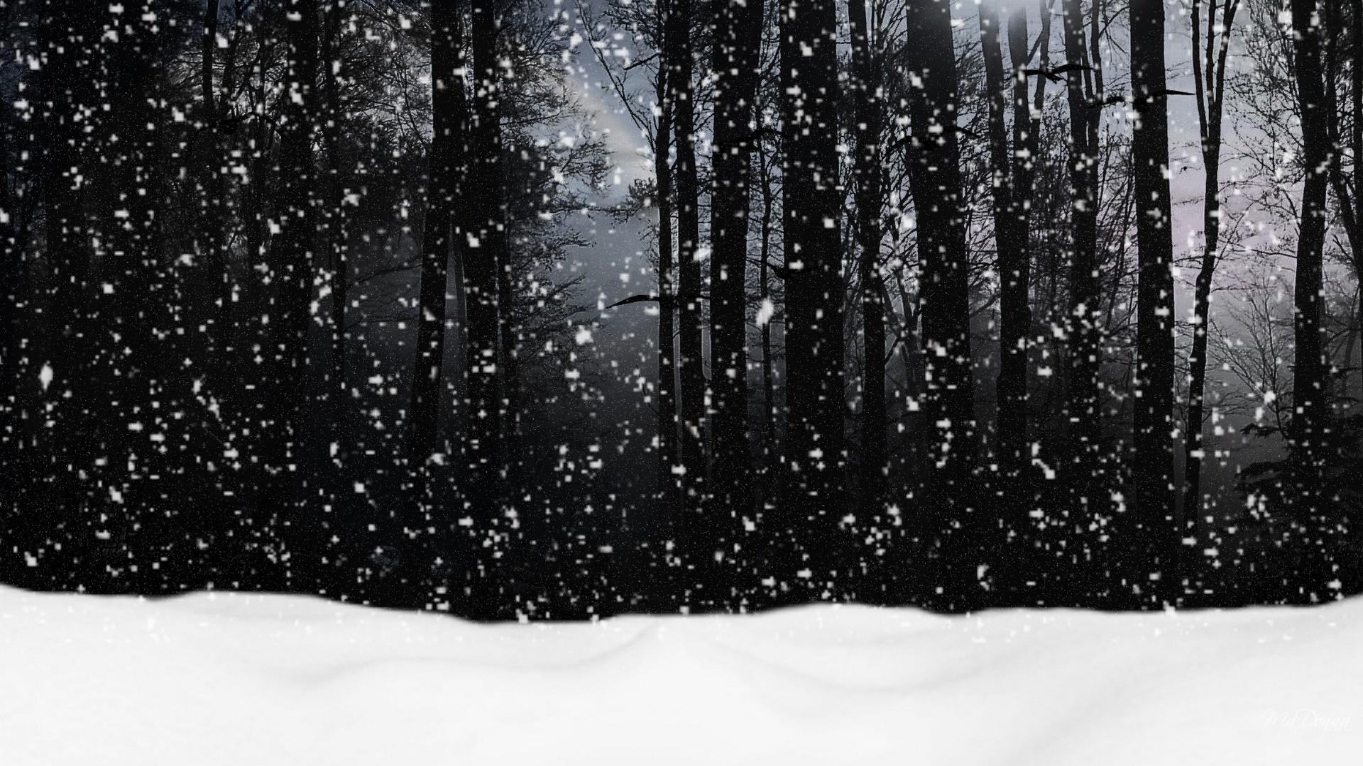 snow tumblr