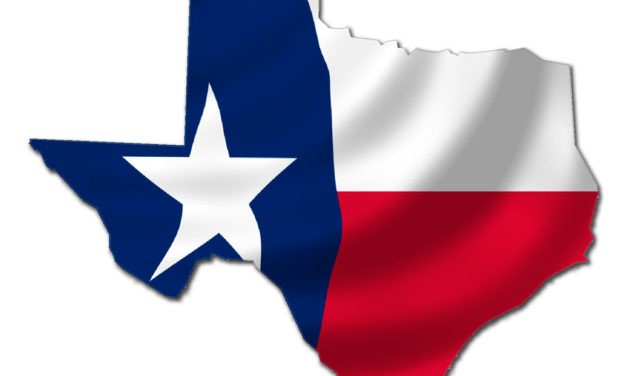 Texas Call to Action: Stand Against Leftist Insurgency