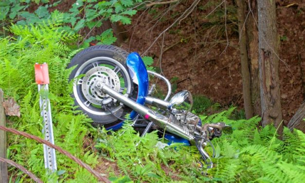 Motorcycle Crash In The Wild Caught On Video